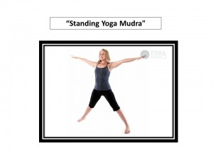 yoga poses for hip knee shoulder  elbow pain  natural