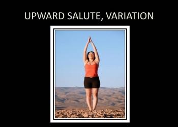 Upward Salute, Variation