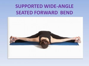 Supported Wide-Angle Seated Forward Bend