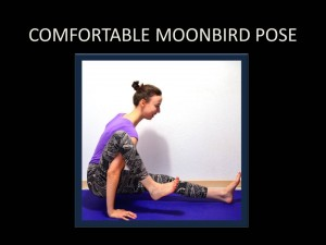 Side Plank Pose Variation
