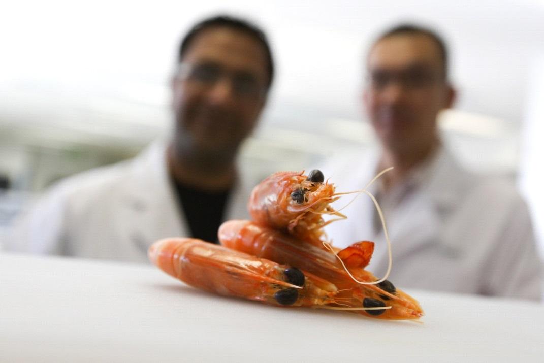Shellfish Allergy Symptoms, Causes, Risk Factors ...