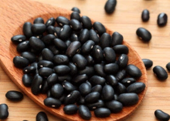 Protein Requirement With Black Beans