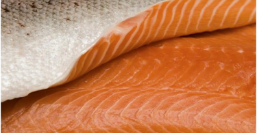 Type Of Salmon