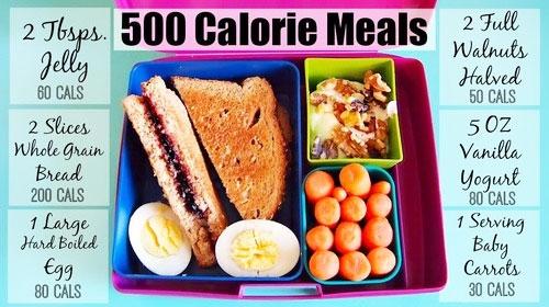500 Calorie Diet