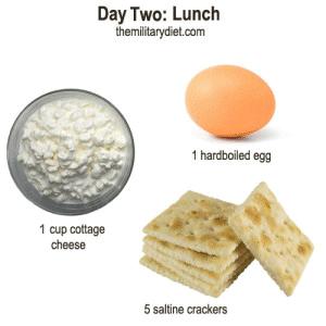 Cincy fat loss kenwood image 4