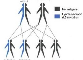 lynch-syndrome