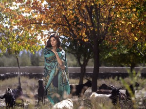 lakhany-silk-mills-winter-shawl-collection-2