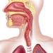 esophageal-spasms