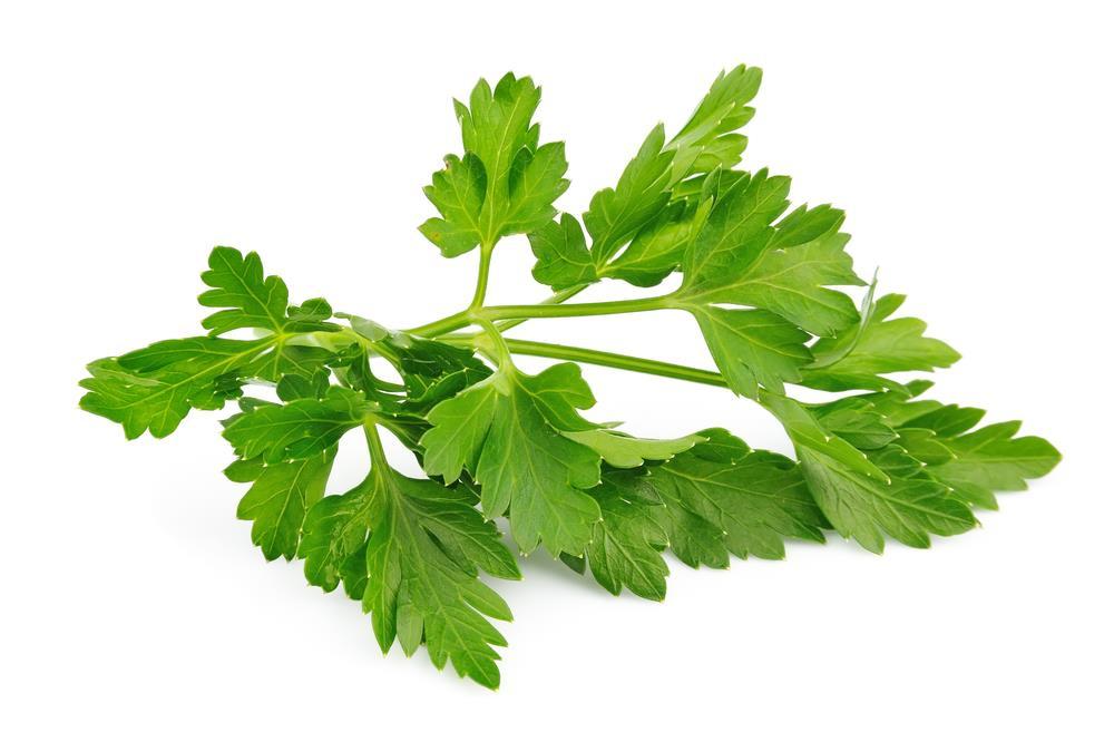 Natural Skin Herbs