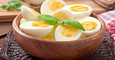 Eating Eggs Diet