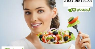 3 Days Meal Plan