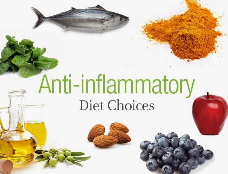 Natural Anti Inflammatory Foods Dogs