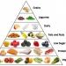 Low Carb Diet Meal Plans
