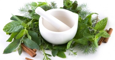 10 Awesome Healing Herbs You Can Use Daily Life