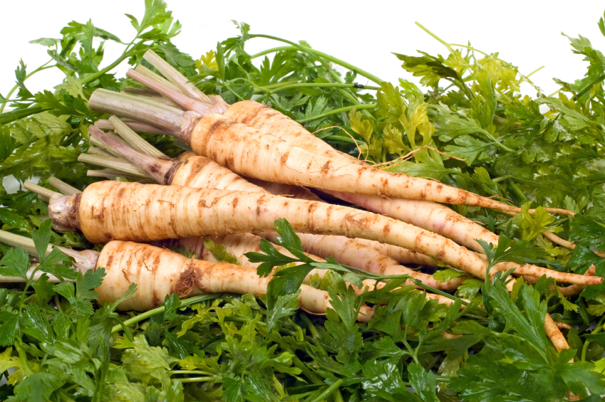 Parsley root natural health news - Tips planting herbs lovage parsley dill ...