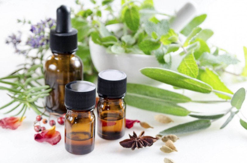 Learn About Essential Oils and Herbs How Works in Everyday