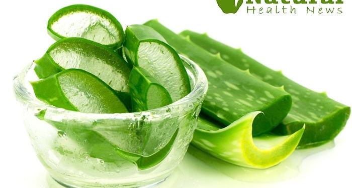 Aloe-Vera-Gel-for-Skin-and-Beauty