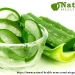Aloe-Vera-Gel-for-Skin-and-Beauty