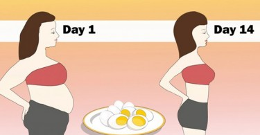 Egg Diet Plan for Weight Loss Reduce Your Belly Fat