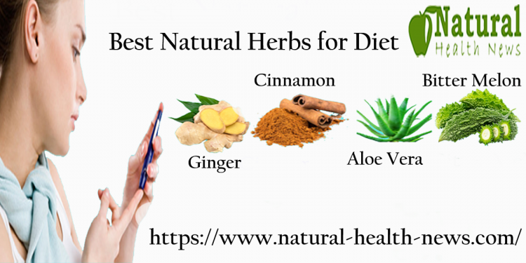 Herbs Good for Diabetes