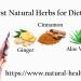 Herbs Good for Diabetes