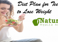 Diet plan for teenager to lose weight